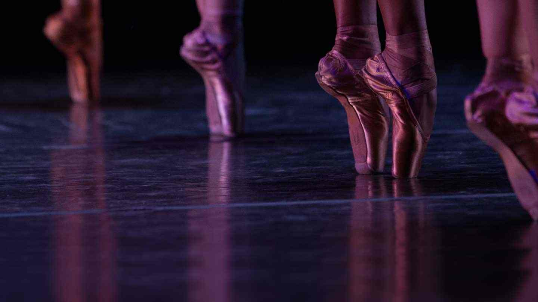 Professional Company Members Ballet Memphis